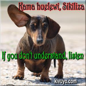 Kama huelewi sikiliza If you cant understand just listen